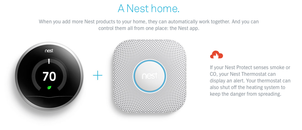 Nest Home Can Do 2